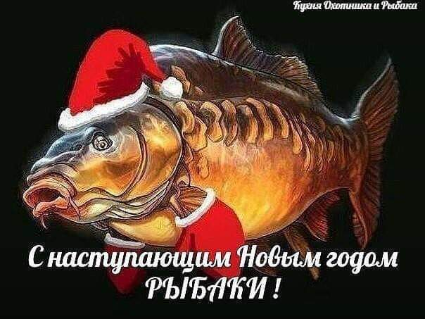 http://s5.uploads.ru/yZtj3.jpg