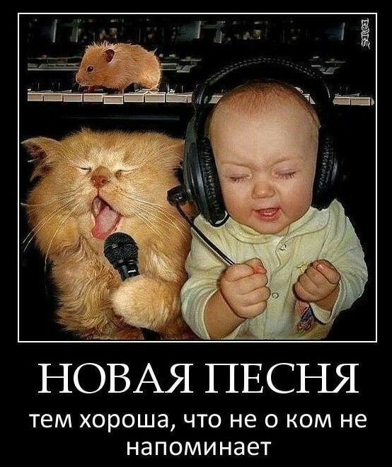 http://s5.uploads.ru/yxjP2.jpg