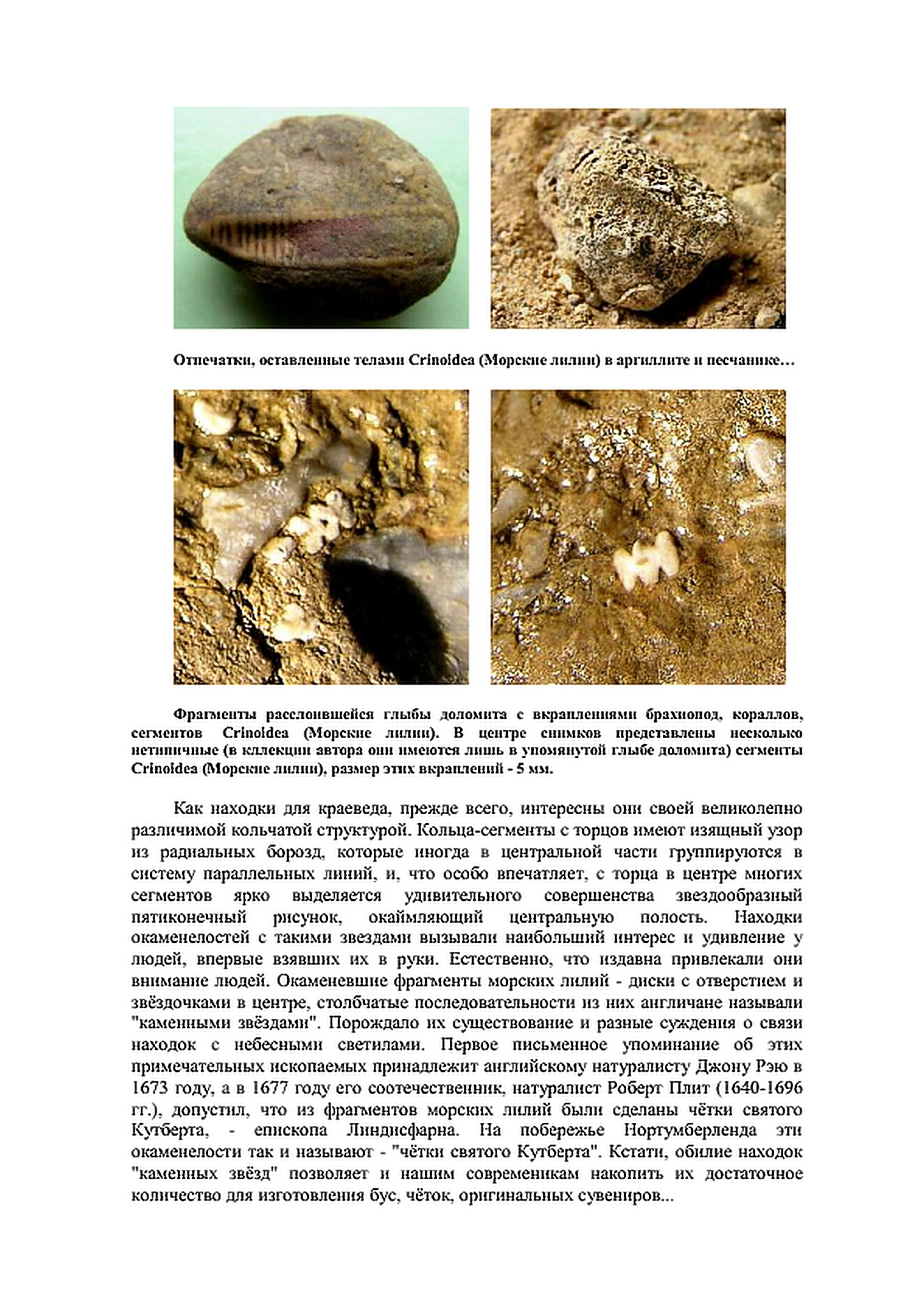 http://s5.uploads.ru/0ARok.jpg