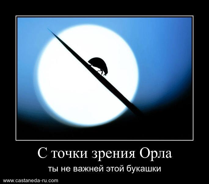 http://s5.uploads.ru/3ct9S.jpg