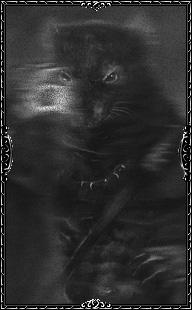 Призрак злого кротокрыса