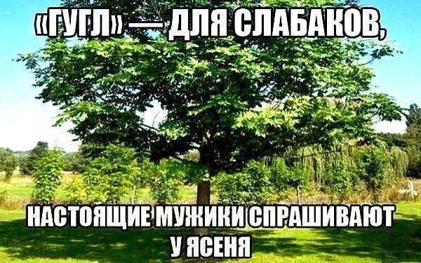 http://s5.uploads.ru/5bMA2.jpg