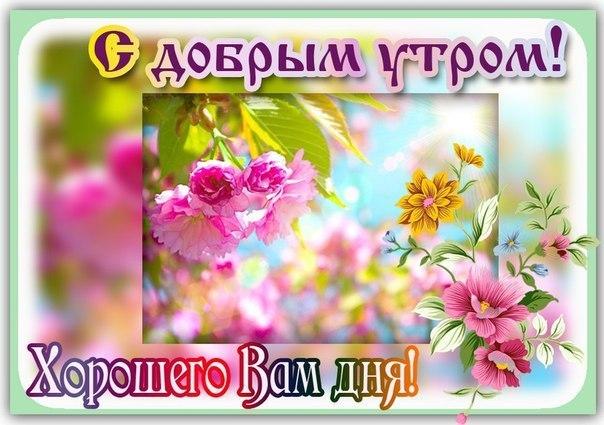 http://s5.uploads.ru/6J3ct.jpg