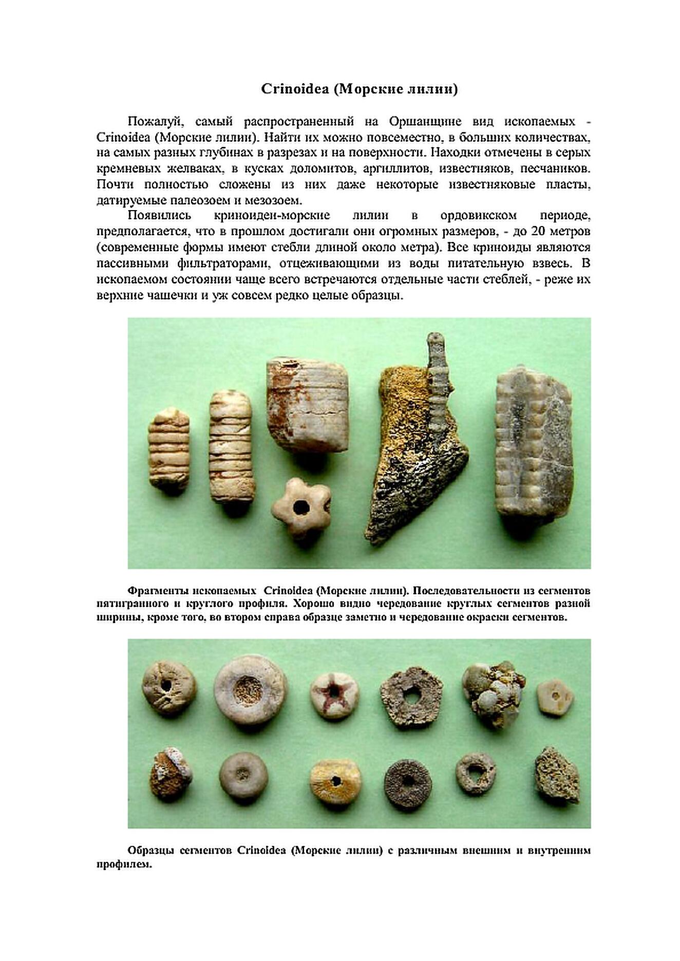 http://s5.uploads.ru/7lAFK.jpg