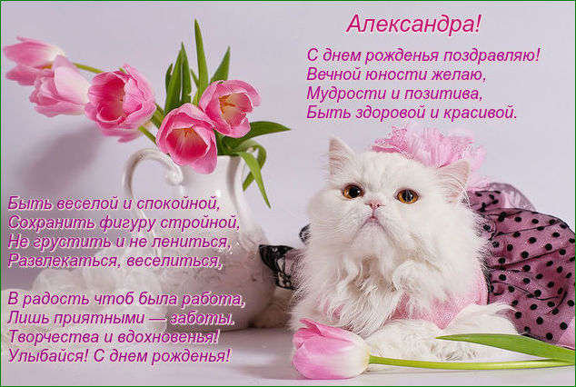 http://s5.uploads.ru/8EhG1.jpg