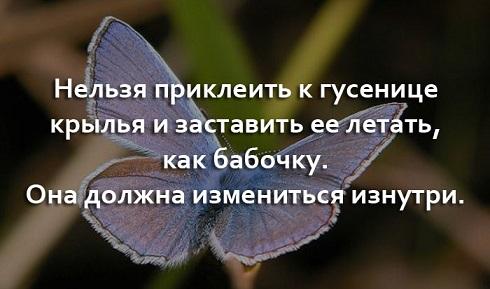 http://s5.uploads.ru/9JPKw.jpg