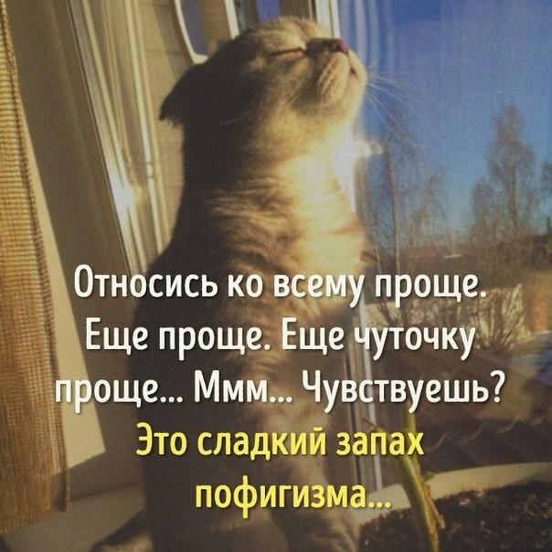 http://s5.uploads.ru/ITv1y.jpg