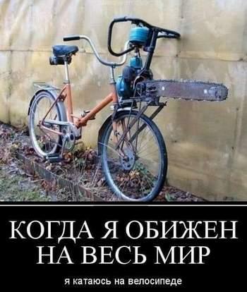 http://s5.uploads.ru/MFrZY.jpg