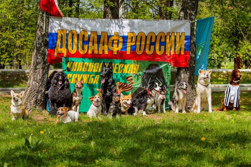 http://s5.uploads.ru/TbOCL.jpg