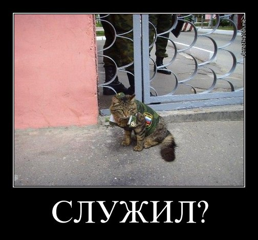 http://s5.uploads.ru/XHn3S.jpg