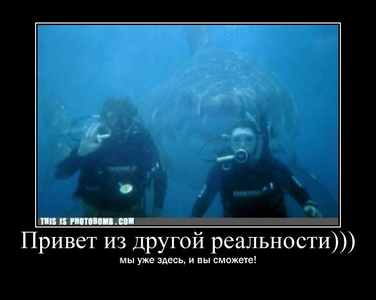 http://s5.uploads.ru/a54kD.jpg