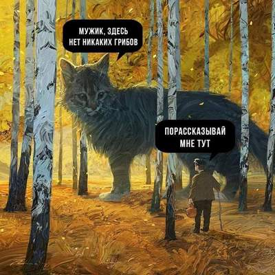 http://s5.uploads.ru/gPE56.jpg