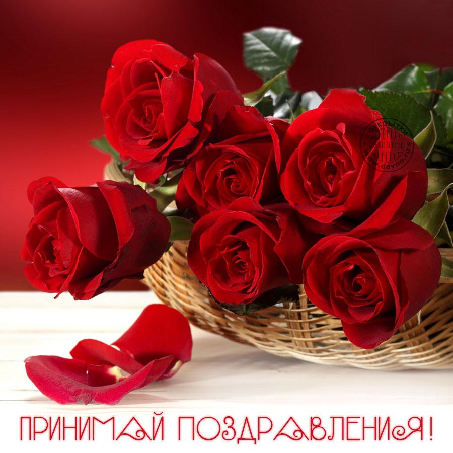 http://s5.uploads.ru/gWNmh.jpg