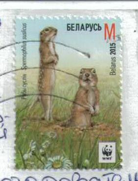 http://s5.uploads.ru/t/09d6z.jpg