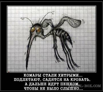 http://s5.uploads.ru/t/0IQqT.jpg
