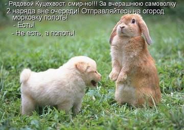 http://s5.uploads.ru/t/2Fxrk.jpg
