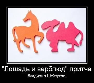 http://s5.uploads.ru/t/3ydFB.jpg