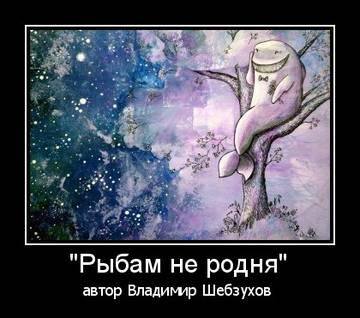 http://s5.uploads.ru/t/CkIiE.jpg