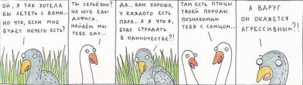 http://s5.uploads.ru/t/Est8B.jpg