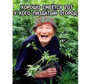 http://s5.uploads.ru/t/GdcRz.jpg