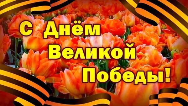 http://s5.uploads.ru/t/Iiowa.jpg