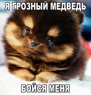 http://s5.uploads.ru/t/P9WeH.jpg