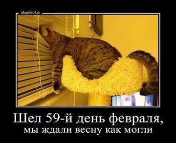 http://s5.uploads.ru/t/PV0jn.jpg