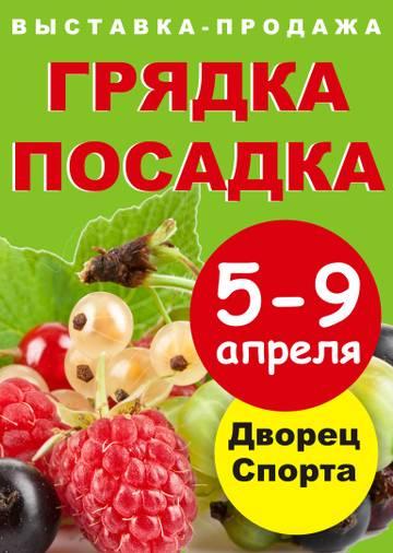 http://s5.uploads.ru/t/UhYFZ.jpg