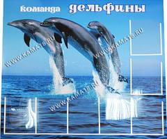 http://s5.uploads.ru/t/eyaMr.jpg