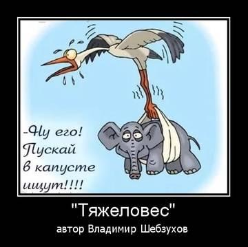 http://s5.uploads.ru/t/l4Eth.jpg