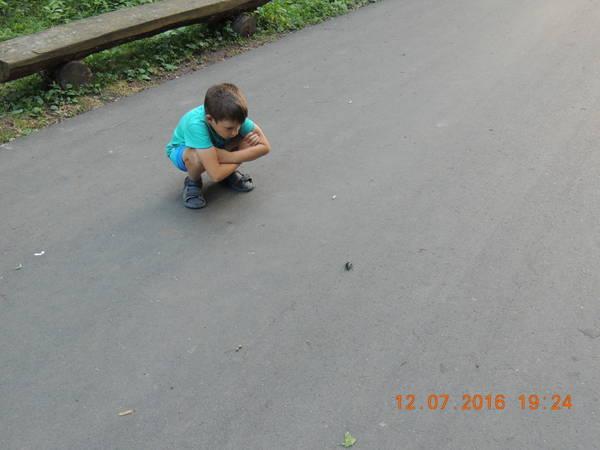 http://s5.uploads.ru/t/pFRB7.jpg