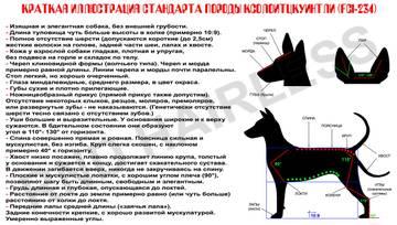 http://s5.uploads.ru/t/wzAJH.jpg