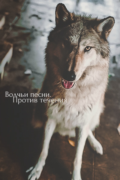 http://s5.uploads.ru/uMCdy.jpg