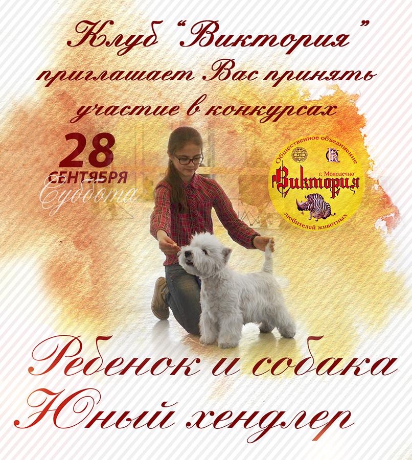 http://s5.uploads.ru/wJXTj.jpg