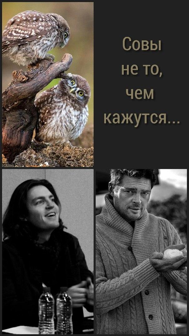 http://s5.uploads.ru/x4gSD.jpg